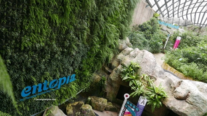 Penang attractions on The Butterfly Farm by Entopia