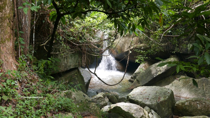 Penang attractions on national parks