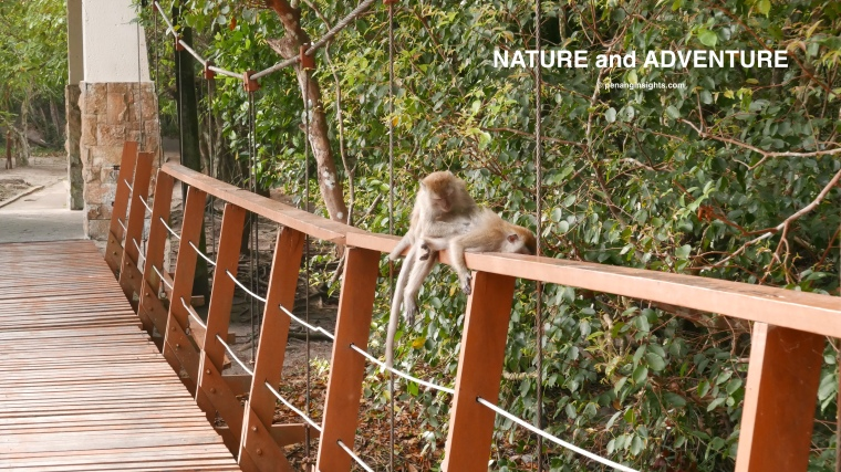 Penang attractions on Penang national parks