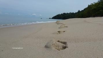 Balik Pulau Penang