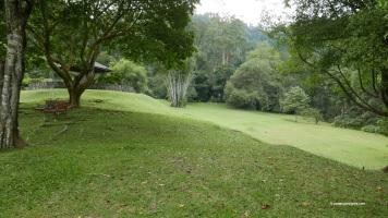Parkland and Garden